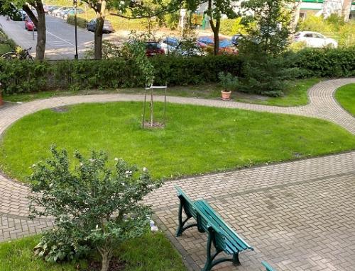 Pflegekraft (m/w/d) in Vollzeit für unsere Tagespflege in Köpenick